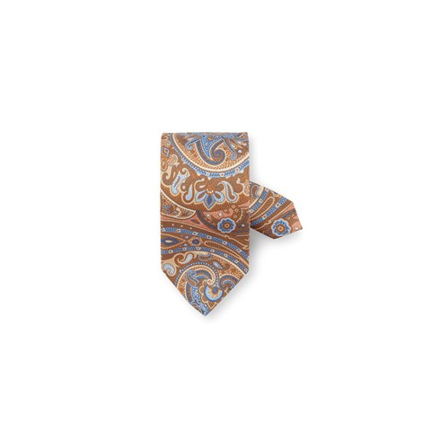 Brown/Blue Paisley Silk Tie
